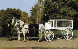 Horse and carriage hearse