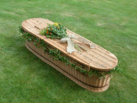 Polish willow coffin