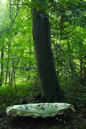 Leaf shroud
