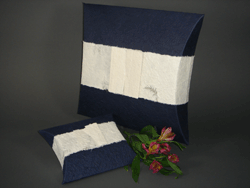 Small Urn Navy pouch