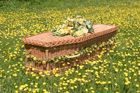 Woven coffin