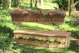 Imported willow coffins
