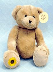 Memory toy bear